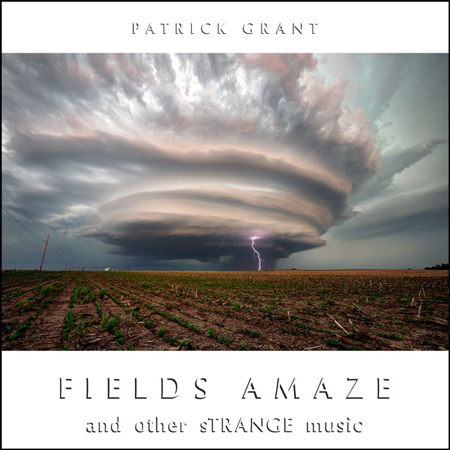 fields-amaze-and-other-strange-music-by-patrick-grant